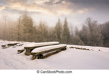 abandoned camping place in winter forest. amazing weather...
