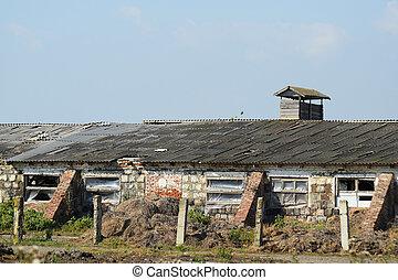 Abandoned cow farm