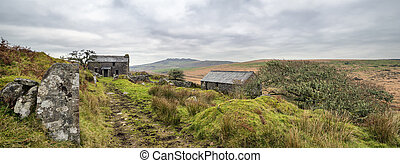 Abandoned, derelict farm house on Garrow Tor a remote part of Bodmin Moor in Cornwall with lichen covered trees and Brown Willy in the far distance.