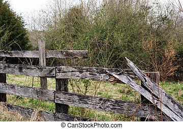 Abandoned Fence