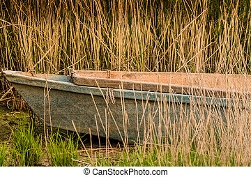 Abandoned fishing boat sitting in tall reeds
