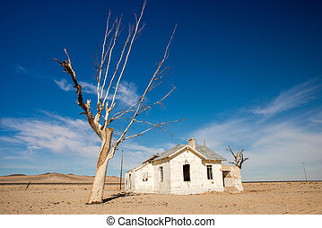 Abandoned House and Tree