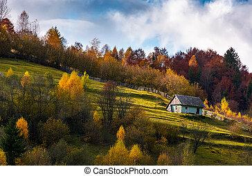 abandoned house in autumn forest on hillside. lovely...