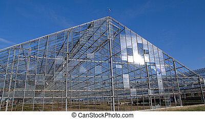Abandoned industrial greenhouse