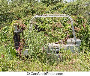 Abandoned lifting truck