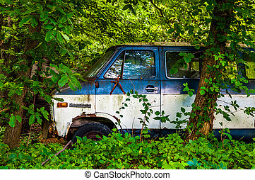 Abandoned old van in the woods.