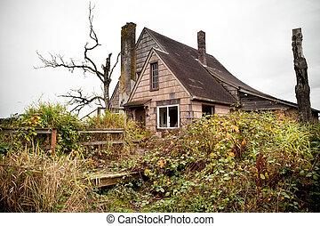 abandoned and overgrown rural home in US