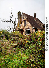 Old abandoned and overgrown house - front porch full of weeds