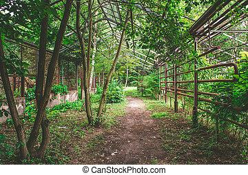 Old soviet style greenhouse