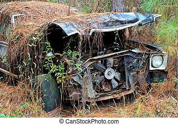 Abandoned Scrap Car