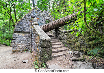 Abandoned Stone House at Wildwood Trail