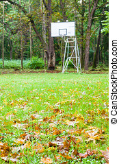 Abandoned street basketball hoop with autumnal foreground