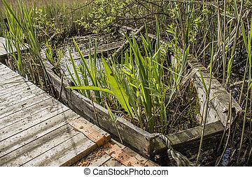 Abandoned sunken overgrown rowboat