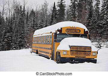 Abandoned weird school bus  - Abandoned weird school bus