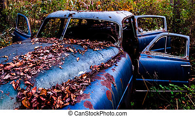 abandonnés, voiture, feuilles, rouillé, couvert, baissé