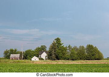 abbandonato, fattoria, spazio copia, rurale