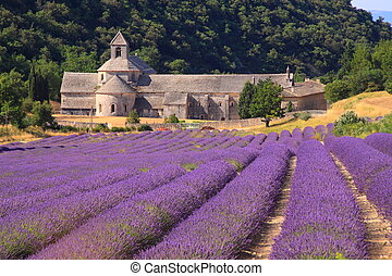 Abbaye Notre-Dame in Provence