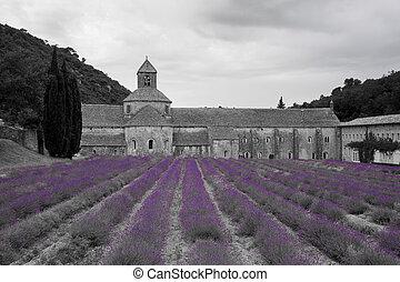 Abbey of Notre Dame of Senanque, Gordes, Provence-Alpes-Cote...