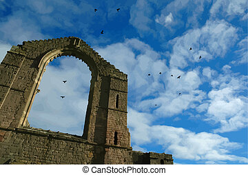 Abbey ruins  - abbey ruins with hovering birds
