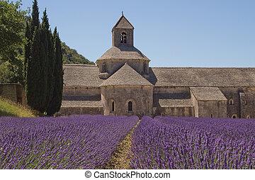 Abbey Senanque (Provence, France) - Famous Abbey Senanque ...