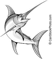 abbildung, stich, swordfish., vektor