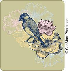 abbildung, vektor, rosen, blühen, hand-drawing., vögel