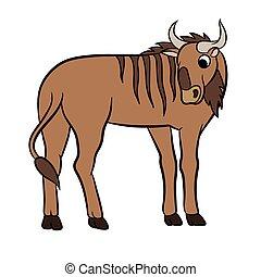abbildung, von, a, wildebeest