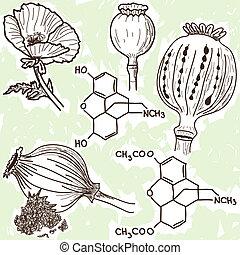 abbildung, von, betäubungsmittel, -, mohnblume, und, opium