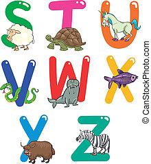 abc, állatok, karikatúra