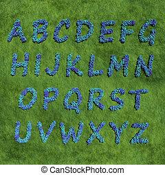 abc alphabet create by blue color flowers
