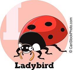 ABC Cartoon Ladybird