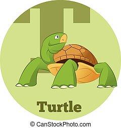 ABC Cartoon Turtle3