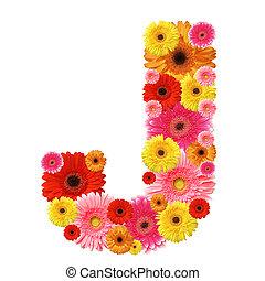 abc - J, flower alphabet isolated on white