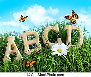 ABC letters with daisy in grass