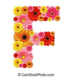 abc - F, flower alphabet isolated on white