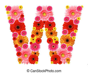 abc - W, flower alphabet isolated on white