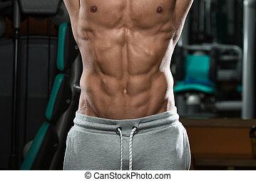 abdominal, destrozado, encima de cierre, músculo, hueso