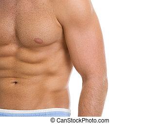 abdominal, músculos,  closeup