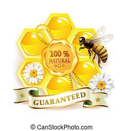 abeille, à, rayons miel
