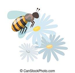 abeille, dessin animé, style, vecteur, illustrations
