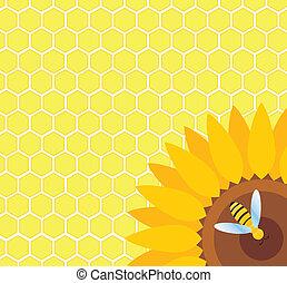 abeille, sur, tournesol, et, rayon miel, vecteur