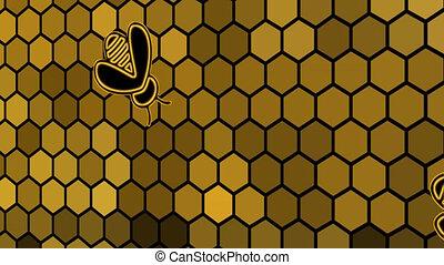 abeilles, présentation, -, ruche, animation, alvéole