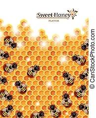abeilles, rayon miel, fonctionnement