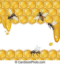 abeilles, rayon miel