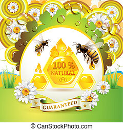 abeilles, rayons miel