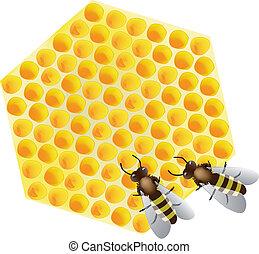 abeilles, vecteur, -, fonctionnement, rayon miel