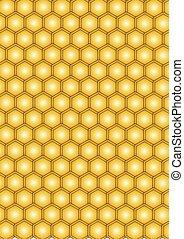 abeja, miel, en, panal