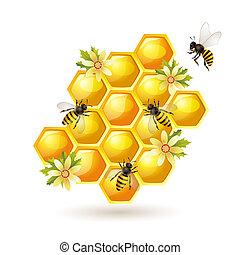 abejas, panal, blanco