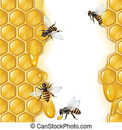 abejas, panal