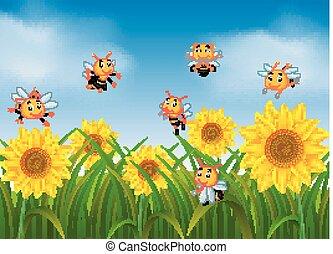 abelhas, voando, em, girassol, jardim